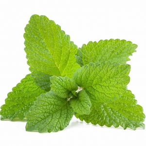Mint Relax – vonný aroma olej